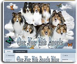 Our Fur Kid Angels