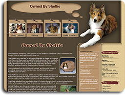 Owned by Sheltie