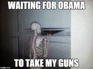 Waiting for Obama to take my guns